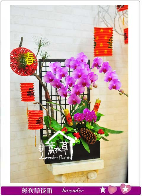 蝴蝶蘭設計106010812