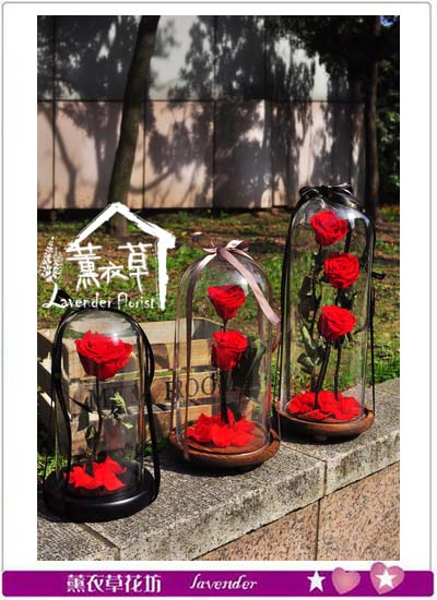 玫瑰單朵~永生花/不凋花106032703