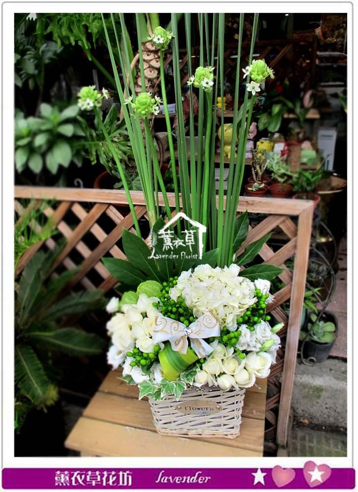 盆花設計c071302