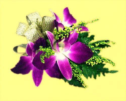y01胸花