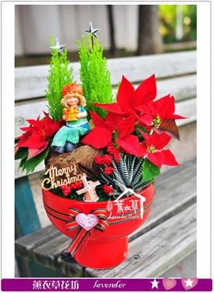 聖誕節 盆栽設計A120127