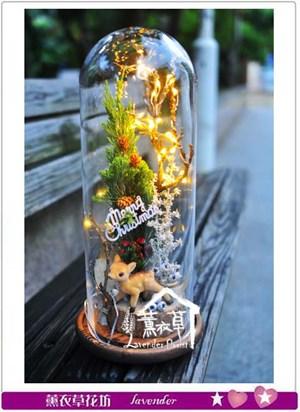 聖誕玻璃罩設計B112312