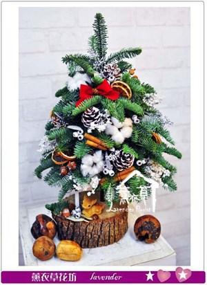聖誕樹~聖誕限定B112313