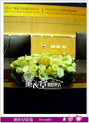 會議桌盆花一組6盆y33005