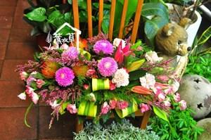 會議桌盆花 106091902