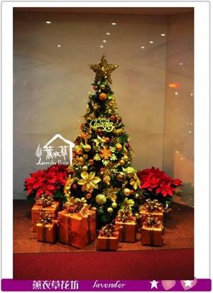 聖誕樹A121215