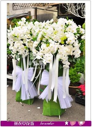 蝴蝶蘭花柱一對a093002