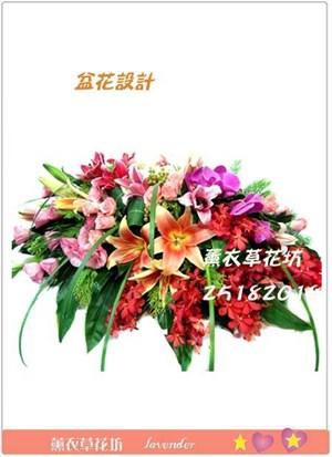 盆花設計F155