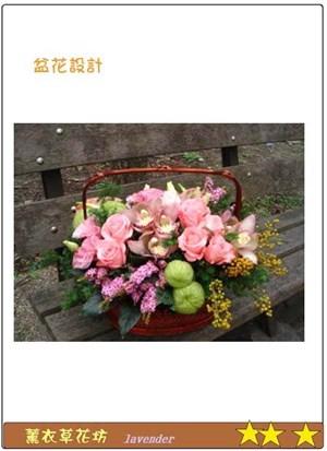 精緻盆花F120