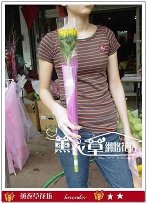 單枝向日葵y6536