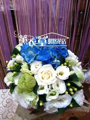 盆花設計y30748