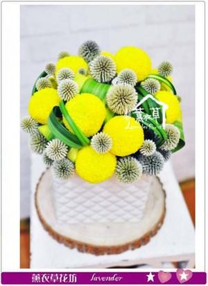 小品盆花b071616