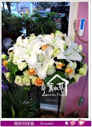 盆花設計y344857