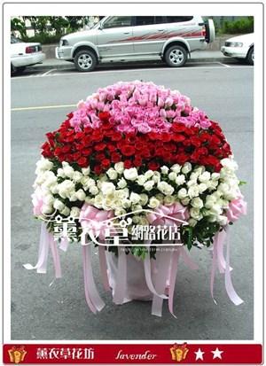 玫瑰999朵y7753