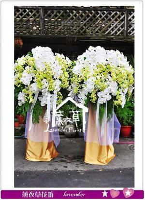豪華蝴蝶蘭花籃 設計106051001