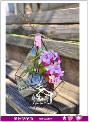 玻璃鋼&蝴蝶蘭設計107031106