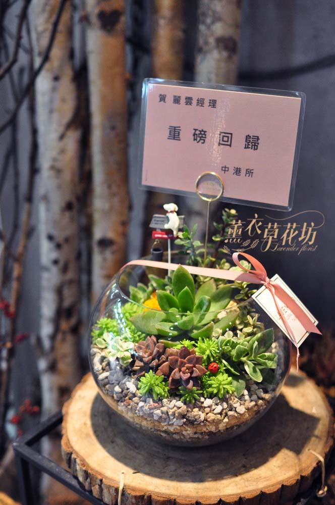 玻璃缸&多肉植物設計/開幕/高陞/107111207