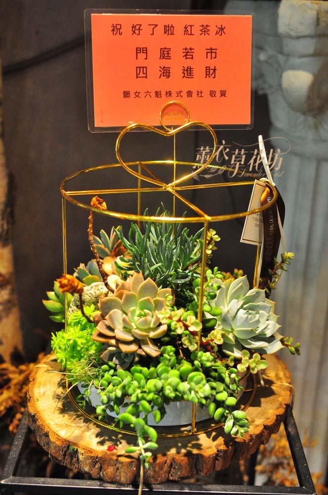 多肉植物&高級鐵藝設計108041003