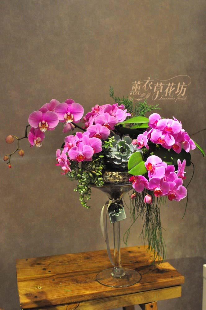 迷你蝴蝶蘭&玻璃設計 108040901