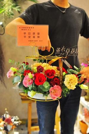 盆花設計108052001
